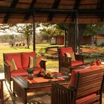 The Lodge blends with nature, with views over a well frequented waterhole