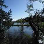 Foto de Witty's Lagoon Regional Park