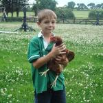 Pet chickens at Decoy Country Cottages