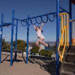 Kiddie's Playground