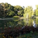 Naturalistic-like landscape in a city park near to 'The tomb of the unknown soldier'. -Warzsawa-