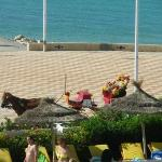Mezzo di locomozione tunisino