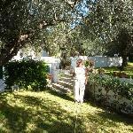 Olive garder