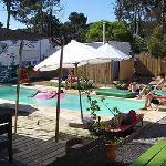 Piscina y bar del hostel