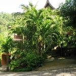 Karuna YMC  building withing Nakatani Village.JPG