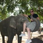 Surin Thailand