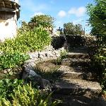 Path with waterfall leading to hilltop