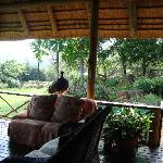 Lounging area of breakfast veranda of main house