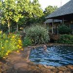 Husband in plunge pool looking towards main house