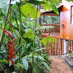 San Jorge Milipe Lodge, Ecuador original lodge