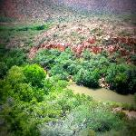 Summer in Verde Canyon/ river view