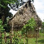 Nearby Lagatero Home