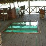 El bar está sobre la laguna