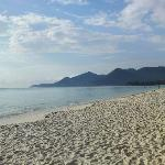 The lovely beach