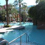 Flamingo Pool Area