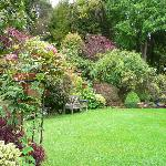Garden area at Kamahi homestead & cottage