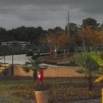 Foto de Jungle Rapids Family Fun Park