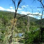 Snowy River National Park Picture
