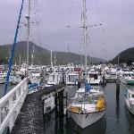 marina, Havelock