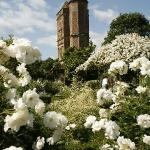 The stunning Gardens at Sissinghurst are just yards away...