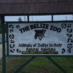 The Belize Zoo Foto