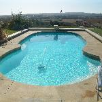 the swimming pool in backyard