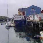 Fiskekrogen Foto