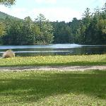 Privately owned lake behind cottages