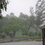 Matamoros during Dolly hurricane