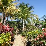 Garten / jardin