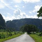 Cycling through Vinales gardin