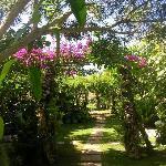 Quel jardin !!!