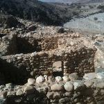 12,000 year old settlement