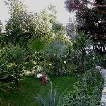 In late december 2008 the paradise garden of Hotel El-Djazair