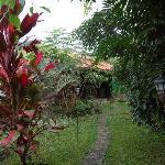 garden leading to bar
