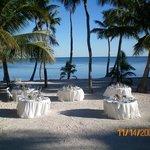 Caribbean Catering Foto