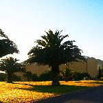 Zenith sur  Domaine de Grammont