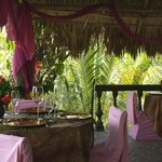 Jungle Treehouse Dining