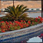 Radisson Blu Hotel, Alexandria Photo