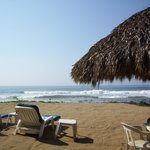 view from the palapa, right out front