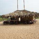 Fransicos shack