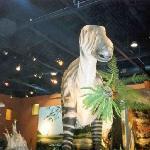 Life sized model Iguanodon set in a Cretaceous landscape
