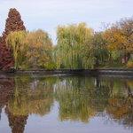 湖面に映える紅葉