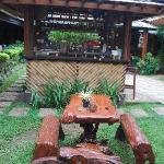 Mini Garden Bar to Chill Out