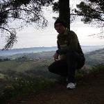 Colline di San Gimignano