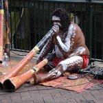 Sydney Aboriginal Discoveries