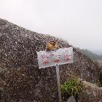 モッチョム岳頂上