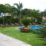Garden area / pool