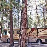 Nice camping environment