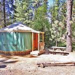 Cool Yurts